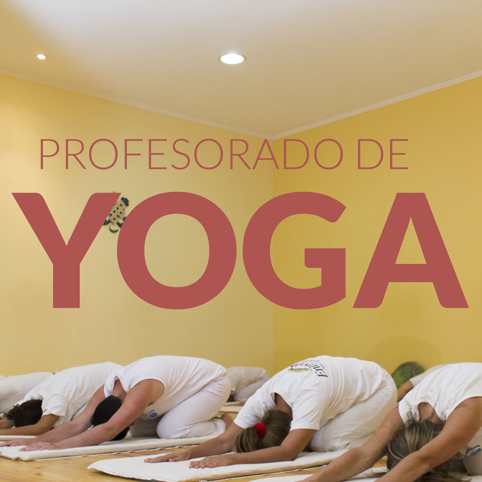 profesorado-yoga-2019